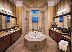 master bathroom bath in front of walk through shower - Google Search