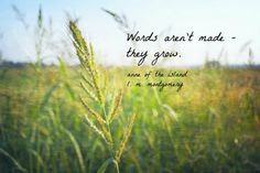 Words aren't made- they grow. Anne of the Island, L.M. Montgomery. Anne Green Gables Quote L M Montgomery by KimberosePhotography, $10.00