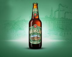 """Pilzner to najpopularniejszy w Polsce gatunek piwa. Jednak i tym razem Browaru Fortuna nie skusiła produkcja piw głównego nurtu. Wystarczy jeden łyk """"Miłosławia"""", żeby przekonać się, że nie jest to kolejne """"piwo jasne pełne"""". Swój odmienny smak i aromat zawdzięcza zarówno otwartej fermentacji, jak i użytym do jego produkcji odmianom chmielu. Korzystają z niego tzw. browary """"rzemieślnicze"""", które produkują swe niezwykłe produkty dla mniejszych choć niezwykle oddanych grup konsumentów."""