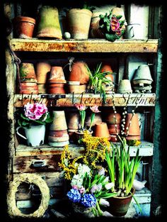 In the Potting Shed  I could use the old egg stand for this