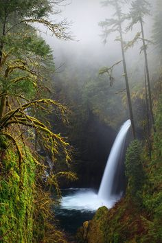 Eagle Creek Oregon