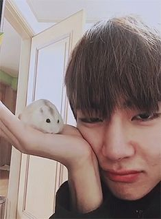 OMG THIS IS SO FREAKING CUTE!! HAMSTER!! TaeTae!!
