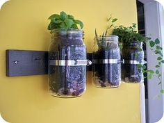 decorative wall storage or planter using mason jar