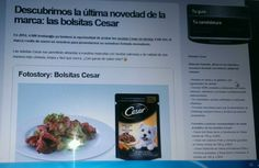 Comida Cesar