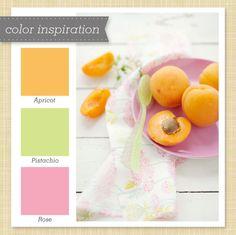 Orange Green and Pink Color Palette