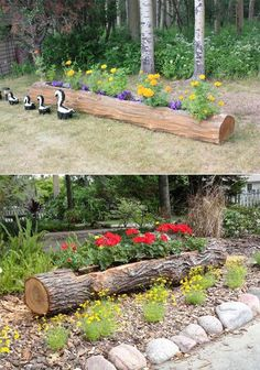 Turn a log into a long planter.