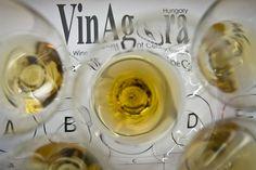A 17, Alcoholic Drinks, Wine, Tableware, Glass, Food, Dinnerware, Drinkware, Tablewares