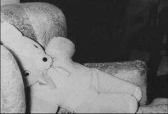 Nancy's teddy bear, won for her by Bobby Rupp at the county fair, photo taken in Nancy's bedroom on the morning the murders were discovered. Kansas, Murder Stories, In Cold Blood, County Fair, Crime, Families, Teddy Bear, Night, Pictures