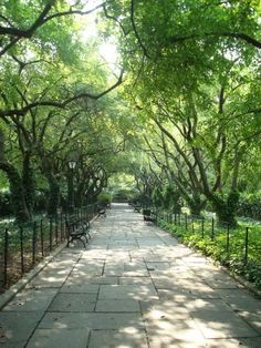 Central Park, New York City--been there and it's so beautiful and romantic! Amazing how it's right in the middle of busy NYC!