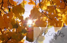 """Sun Through Fall Leaves by JRRCrafts on Etsy, $30.00 Please """"like"""" my page on Facebook, One Crafty Rose, to keep up to date with the newest items!  Thank you for looking at my crafts!"""