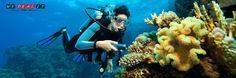 #SOUSSE : Plongez dans l'ivresse idyllique des profondeurs marines et découvrez un univers exceptionnel avec une balade fascinante et inoubliable sous l'eau à seulement 39 DT au lieu de 105 DT  !