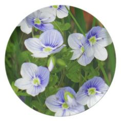 Cute, little blue flowers party plates by fotosbykarin #plates #partyplates #flowers #blue #cute #fotosbykarin #KarinRavasio #Zazzle #gifts #k-ravasio