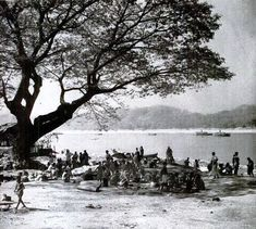 The Irrawaddy River is destination of the Indians. Here they have camped for several days hoping for a boat that will take them upriver to Mawlaik nearer the border of India. Most of their money is gone and many were still here when the Japs came. Under the generous acacia tree they squat while the Burmese boats hover tantalizingly in river.