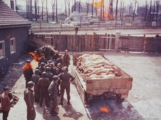 A group of soldiers stand around at truck containing the bodies of 40 persons who died at the infamous Buchenwald Concentration Camp.
