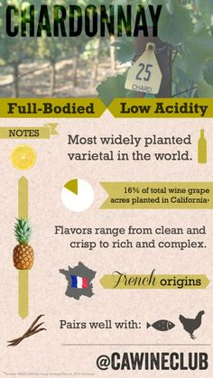Chardonnay is the most widely planted wine grape in the world. There are two Chardonnay styles: crisp, clean unoaked Chards, and complex oaked versions. Wine Tasting Party, Wine Parties, Wine Facts, Best Wine Clubs, Different Types Of Wine, Wine Varietals, Chateauneuf Du Pape, Wine Education, Wine Guide