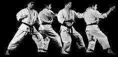 Fumikomi shutō uke