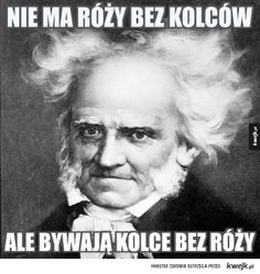 Najlepsze memy z Schopenhauerem Depression Memes, Everything And Nothing, Life Thoughts, Funny Texts, The Funny, Sarcasm, Einstein, Haha, Funny Pictures