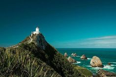 Nugget Point, The South Island, New Zealand The Beautiful Country, Beautiful Places, Beautiful Pictures, New Zealand Adventure, New Zealand Travel, New Zealand South Island, Auckland New Zealand, Cool Photos, Places To Visit