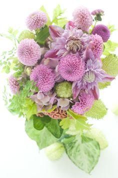 Dahlia , balloon cotton bush bouquet