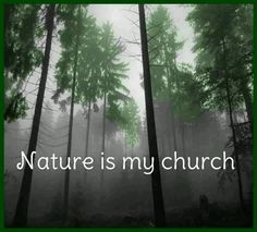 Mother earth is my Goddess, Kindness is my religion, and Nature is my church...