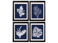 Coral Prints White on Blue Sea Coral Print by BeachHouseGallery, $14.99