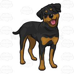 cartoon dog rottweiler sticker rottweiler pictures cartoon rh pinterest com rottweiler clip art images rottweiler clip art images