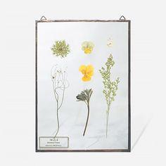 Botanical Frame_L010(A_Copper) | MILCH