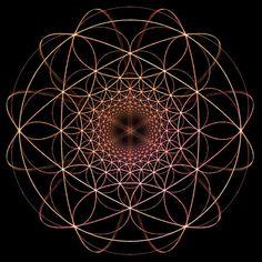Flower of life - Hyperbolic