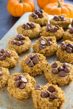 Looking for a easy pumpkin recipe? This is it! These Pumpkin Oatmeal Cookies are made with just 5 ingredients! Add chocolate chips on top of the cookies to take it to the next level of yum! Sugar Free Option is also available in recipe.