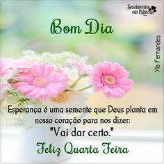 Bom dia # feliz quarta-feira                                                                                                                                                                                 Mais