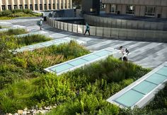 University of San Francisco, John Lo Schiavo, S. Center for Science and Innovation University Of San Francisco, What Is Landscape, Science Programs, Art And Architecture, Innovation, Skylights, Building, Outdoor Decor, Design