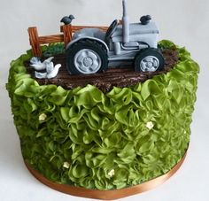 Massey Fergusson tractor cake with airbrushed ruffles to look like a hedge Tractor Birthday Cakes, Tractor Cakes, Graham Cake, Anniversary Cake Designs, Dad Cake, Marble Cake Recipes, Truck Cakes, Cakes For Men, Cake Decorating Tips