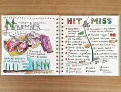 My #November on the #allotment You can read more on my blog if you follow the…