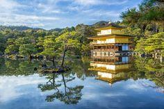 20 de curiozități din lume: de la templul acoperit cu aur la țara cu cele mai multe lacuri