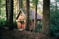 http://cabinporn.com/post/129287305032/owl-tree-cabin-in-albion-california-available