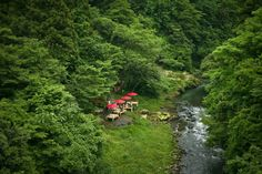 """""""""""Kawadoko"""" riverbed"""" The next morning, I went to Yamanaka onsen and visited the famous """"Kakusenkei."""" Every year from April to October, you can walk along and see the """"Kawadoko"""" riverbed"""