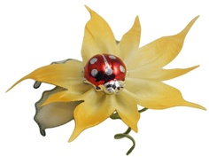 Fantastica bomboniera con una coccinella portafortuna... completa di una bellissima coccarda portaconfetti a forma di fiore!!!