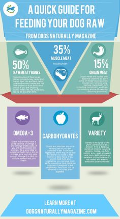 Dogs Naturally:  A Handy Guide for Stating Your Dog on Raw Food