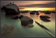 Bonsai Rock Study #5 - Lake Tahoe, Nevada, USA