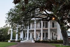 Dunleith Inn, Natchez, Mississippi. We went on our honeymoon to Natchez. I was born and lived there as a child. We stayed in Dunleith. Three Presidents had slept in the bed we slept in.  It was a beautiful Antebellum bed, but NOT ideal for a honeymoon...if you get my jest.