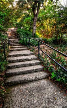 Los Angeles County Arboretum and Botanic Garden in Arcadia, CA