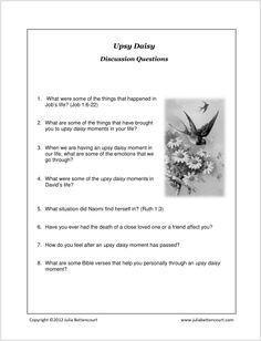 Daisy Lesson Discussion Questions