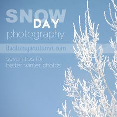 Snow day photography; 7 tips for better winter photos, including photoshop tips on how to make overexposed snow look pretty