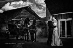 Wedding with Horse and Carriage