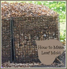 HOW TO: Leaf Mold - Nature's Natural Soil Additive - Don't waste those leaves!