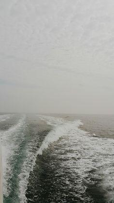 늘 좋은 바다