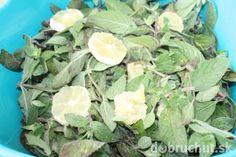 Fotorecept: Mätový domáci sirup Cabbage, Vegetables, Plants, Food, Syrup, Essen, Cabbages, Vegetable Recipes, Meals