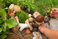 Stuffed Mushrooms, Vegetables, Color, Stuff Mushrooms, Colour, Vegetable Recipes, Colors, Veggies