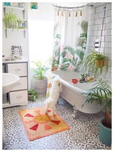 Laurie & I are on BBC Radio Sussex this Thursday! Were sharing. Decorating Blogs, Interior Decorating, Wooden Bath, Roll Top Bath, Clean Space, Uk Homes, Hanging Plants, Plants Indoor, Bathroom Styling