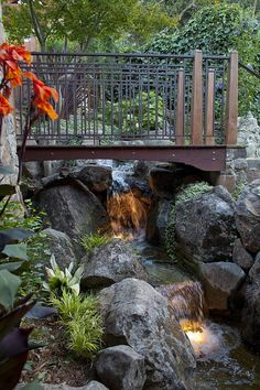 40 Cheap Landscaping Ideas for Your Backyard That Will Inspire Garden Pool, Easy Garden, Garden Bridge, Garden Paths, Tropical Garden Design, Tropical Landscaping, Backyard Landscaping, Backyard Waterfalls, Backyard Ideas
